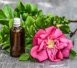 Bottle of Essential Oil and Flower